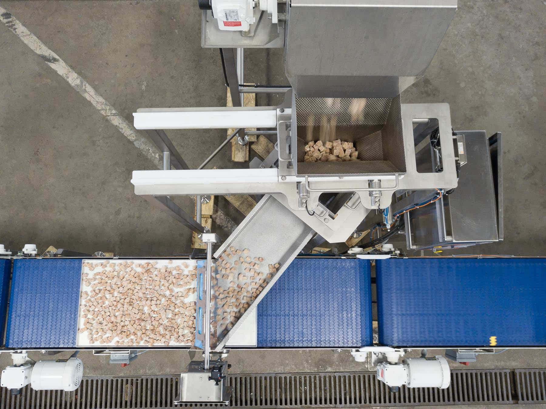 Stainless steel conveyor belts enhance food grade cleanliness